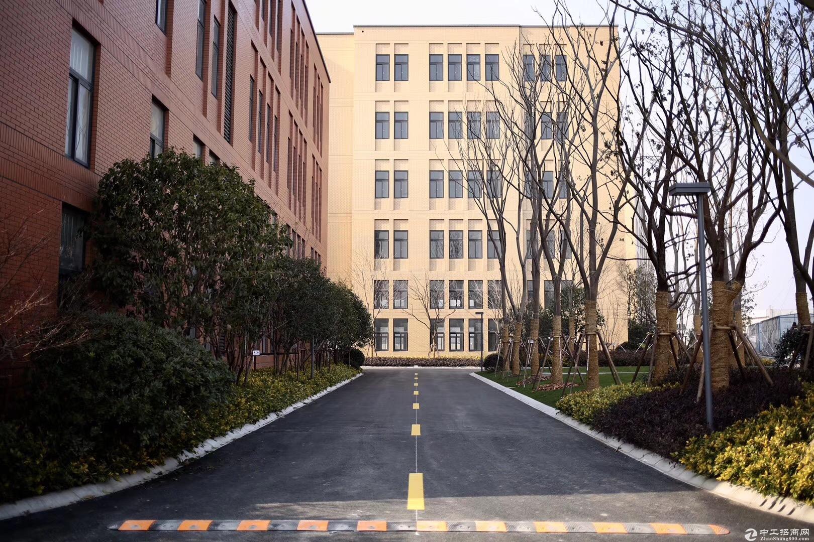 宝山罗泾104板块,研发生产仓储825~5900平