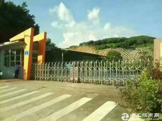 惠州市惠阳新圩占地8000平方米,建筑钢构7000平方米