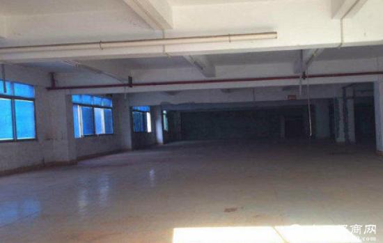 急租南城区550平方一楼标准厂房带装修
