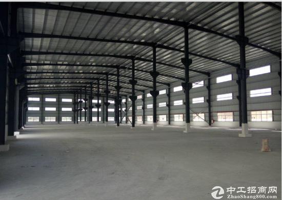园洲上南单一层钢构厂房1500平8米高低价招租-图3