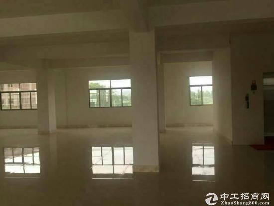 自建厂房的企业看过来 中山市50年产权国有土地
