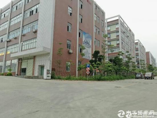 石岩水田8400平米研发办公厂房可分租