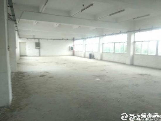 六联社区精装修厂房一楼1600平方
