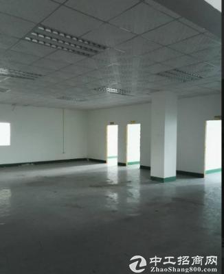 真实厂房 坪山石井2楼650平米租12元可分租