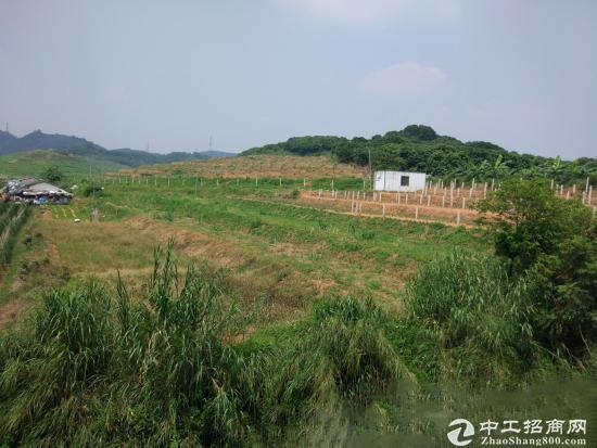 中山 南头 100亩带红本国有土地招商引资可分割