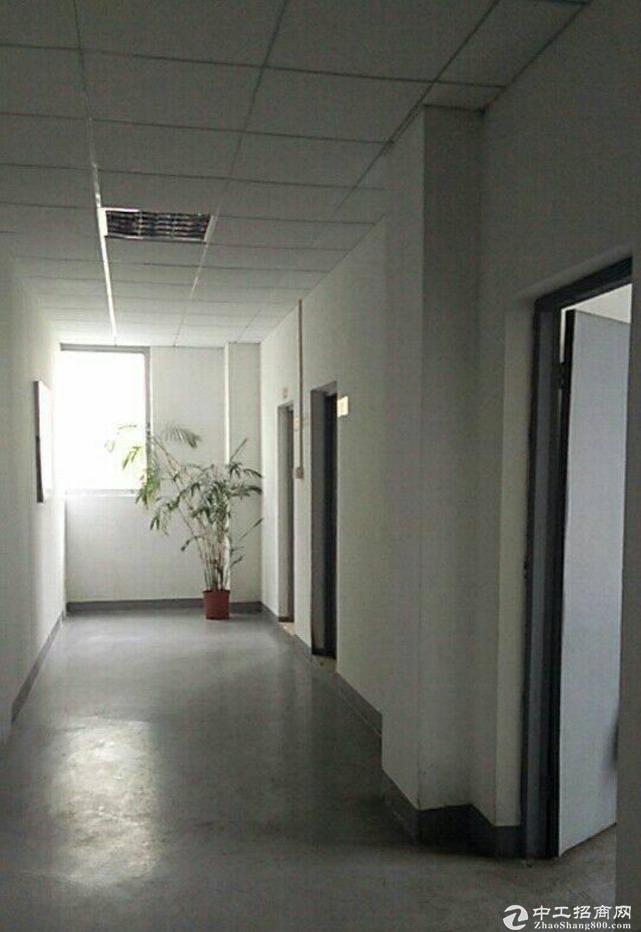 黄江袁屋豪华装修500平米楼上厂房