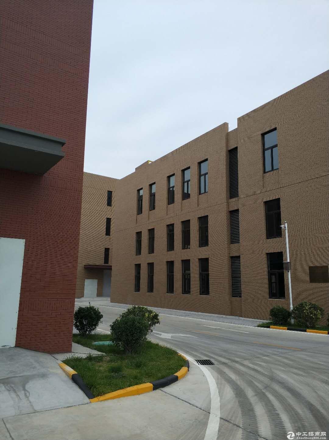 高新区出售标准厂房大证1200—4600平均有