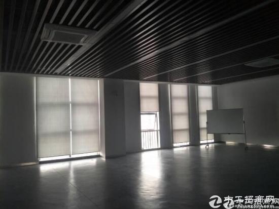 大工业区新出厂房10000出租-图3