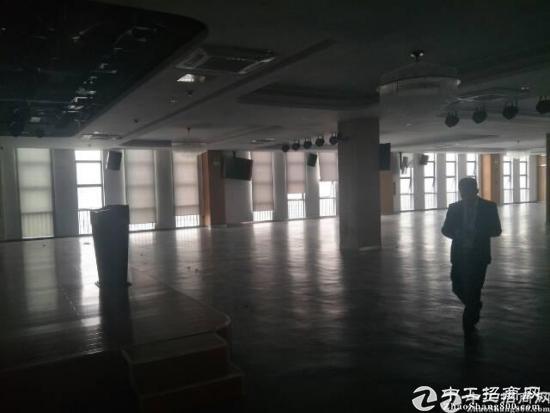 大工业区新出厂房10000出租-图4