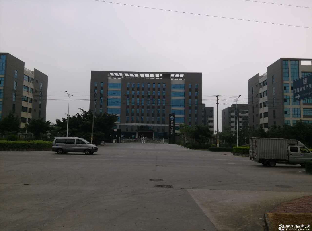 松山湖全新两栋六层48000平方高新产业园出租(可分租)