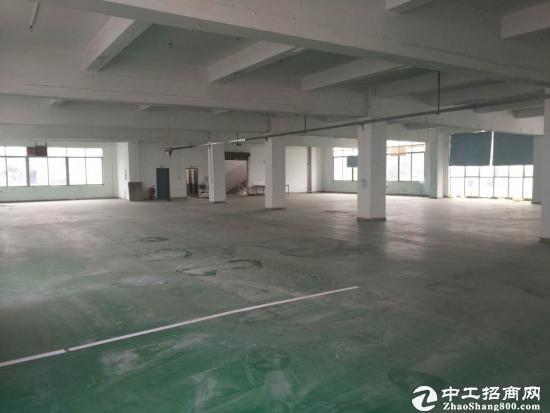 坪山中心位置新出一楼标准厂房招租厂房1200平米,5.5米高带现成装
