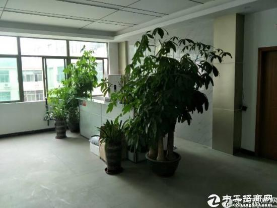 坪山碧岭工业园二楼1000平米公摊百分之10带装修水电齐全不要转让费