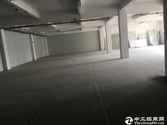 比亚迪旁边原房东500平一楼厂房出租 层高5米图片2