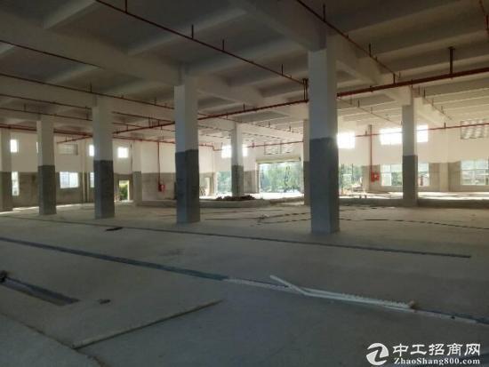 厚街桥头工业园附近原房东实量一楼870平直租,租15块