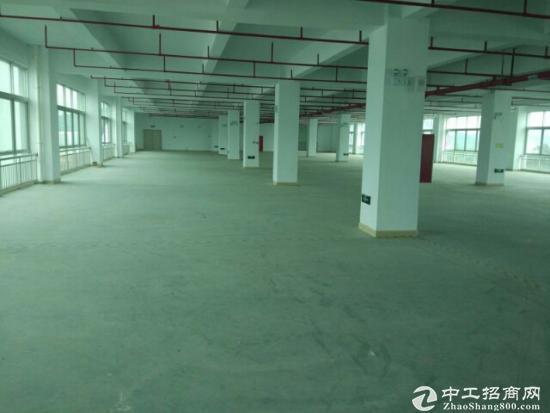 松岗燕川新出独院厂房30000平方米有红本形象好原房东带喷淋25元租