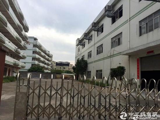 厚街独院标准厂房原房东招租,一楼1530平方,证件齐全