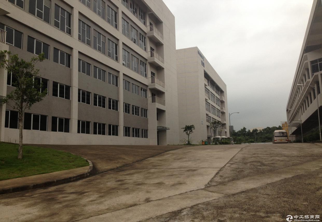 广州开发区工业厂房15亩出售、欢迎来电咨询
