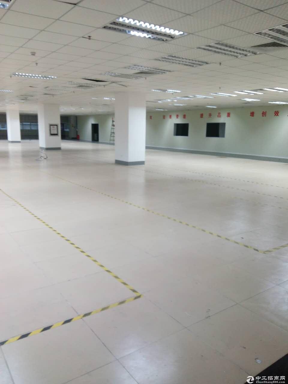 光明中心区高新技术产业园  地铁6号线 高速出口旁 红本厂房招租