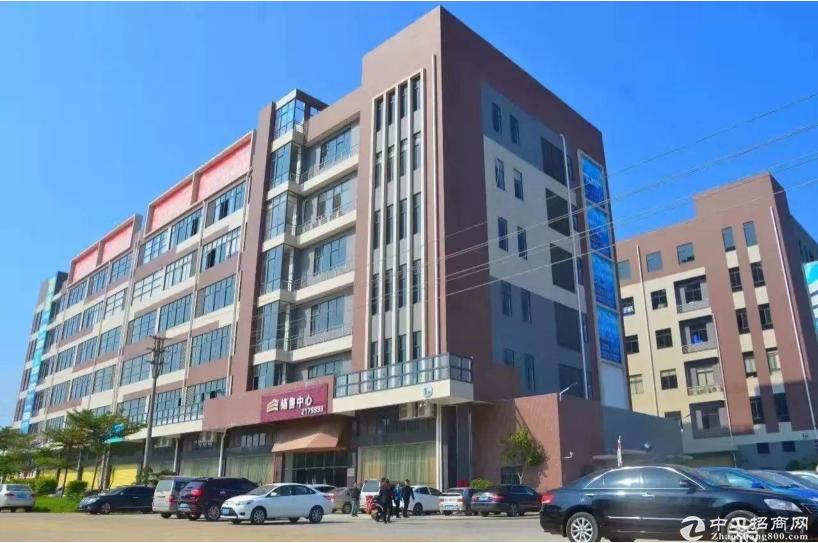 出售江门全新独栋标准厂房28000㎡ 可分割带红本