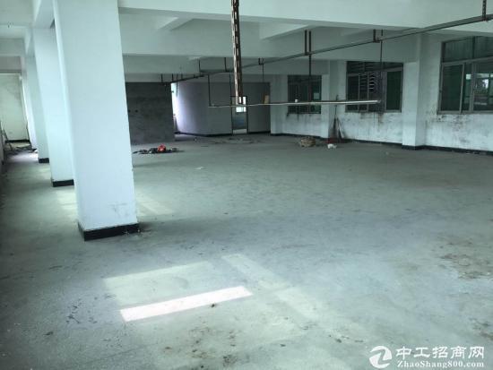 陈屋太平路新出1-3层独栋厂房1800方,整租11元