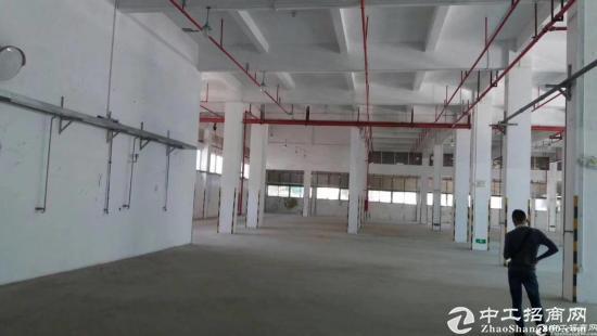 西丽物流园2850平米仓库招租可分租