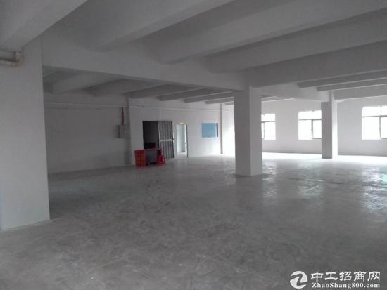 厚街莞太路白濠段2楼500平标准厂房,有简易电梯