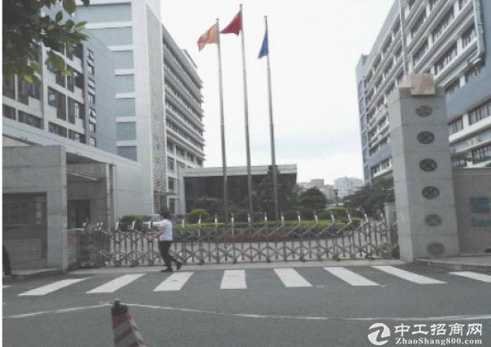 (出租) (优)福永宝安大道边上新出800平米带豪华装修厂房