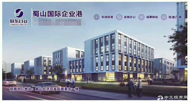 蜀山区独栋办公楼出售 车位多 展示形象好 胜过写字楼