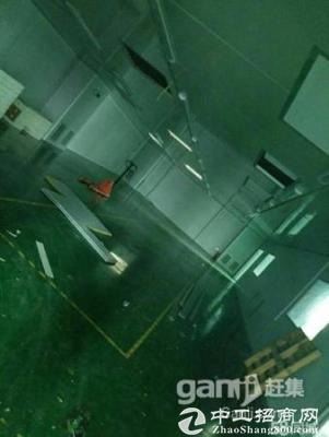 坪山 碧岭 500平米二楼带装修厂房出租