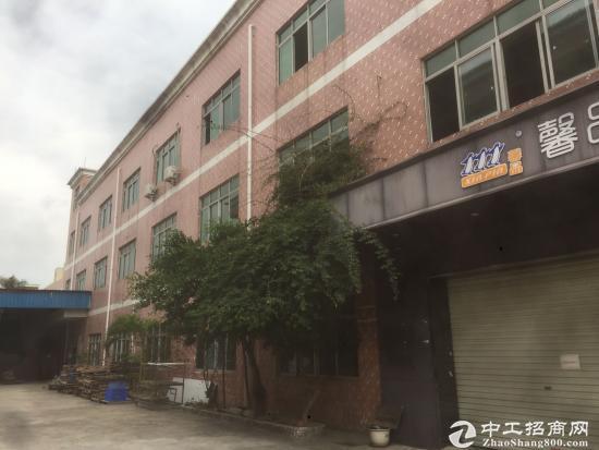 坪山 石井 原房东一楼3000平米厂房出租