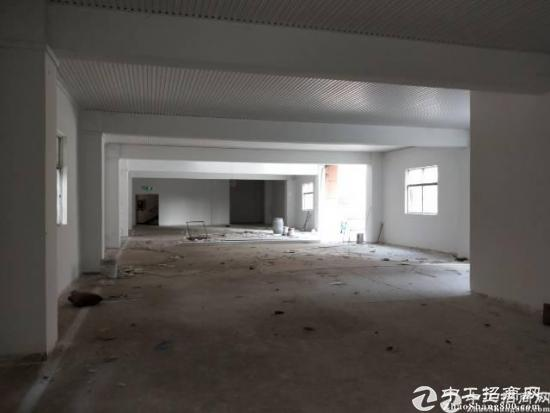 厚街新出独院三层厂房6000平原房东出租,0公摊面积