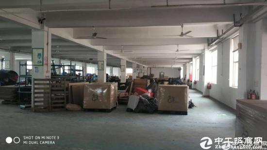坪山石井新出标准厂房一楼2880平可分租