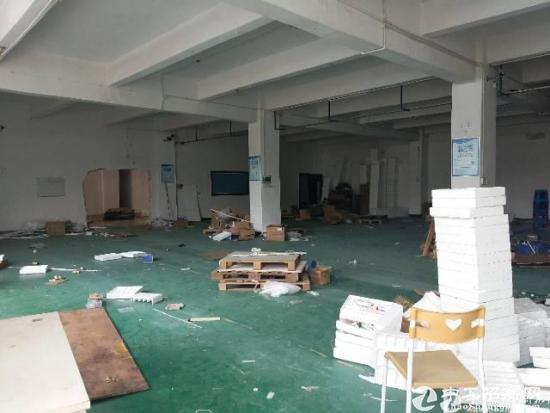 新塘南湖路标准厂房一楼620平公摊小,价格超便宜
