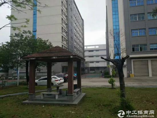 坪山区大工业区原房东厂房,总面积约4万平米出租