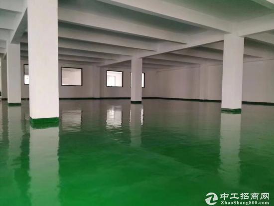 坪山 六联 深汕路 内外翻新厂房 2楼1100平、 形象好、