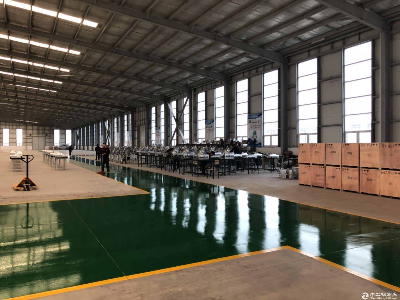 能注册环评的900平至2300平单层厂房出售-图5