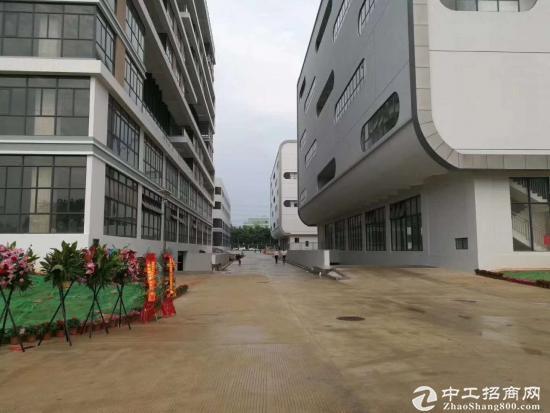 坪山聚龙山片区新出独院研发办公楼出租40000平米,电800kva