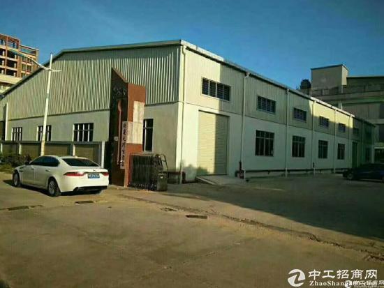 新围村经典独院出租院内单层钢结构厂房800平方,滴水7米