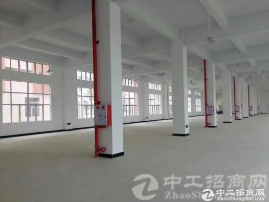 茶山镇原房东带红本厂房 厂房1-5层9800平方