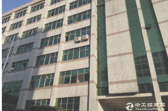 (出租) 出租1000至3000坪深圳加工区保税仓库出租
