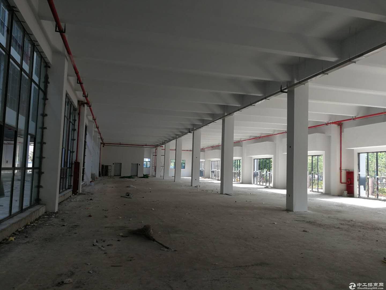 新站区新建办公楼3900平多层出租--可分割