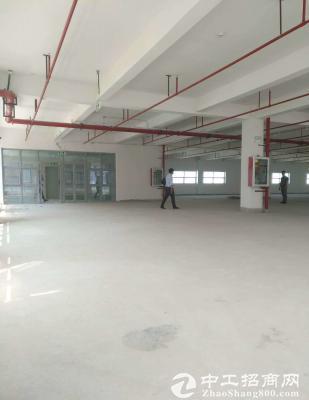 坪山大工业区原房东厂房出租 整层1200平 带装修