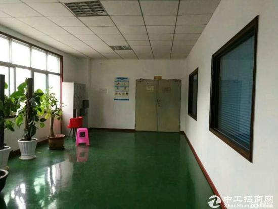 坪山 石井荔景路边 新出独院厂房9000平 共三