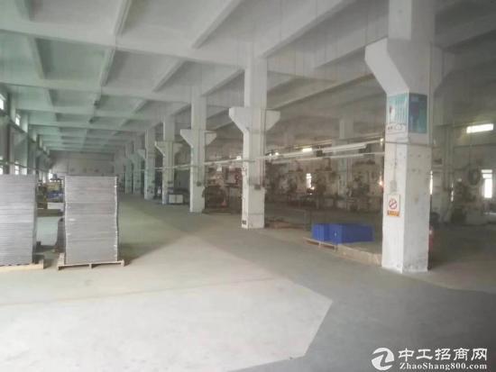 江门开平镇独院厂房一咯偶单层面积2800平方招租