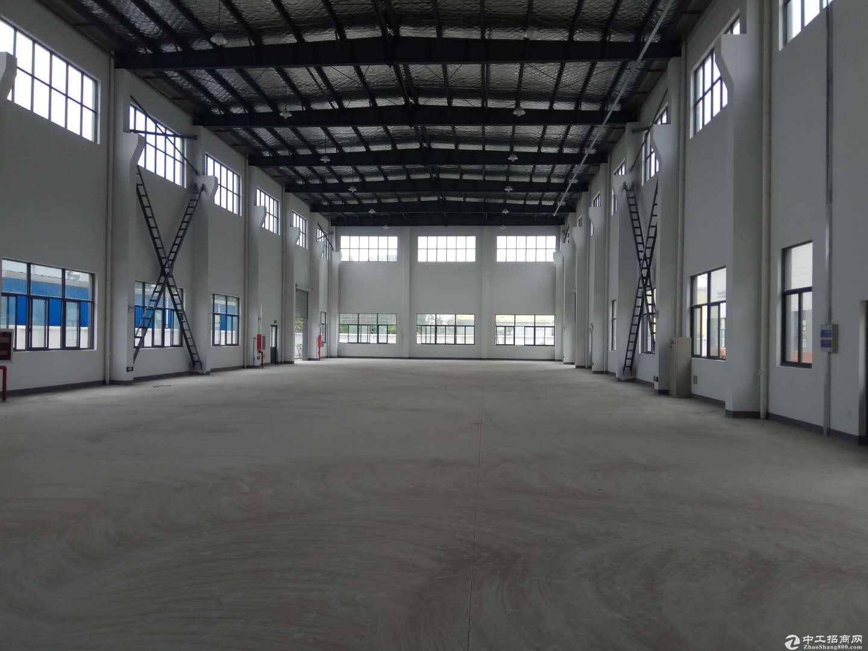 张浦单层标准厂房1000平 证全 可做仓库图片1