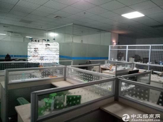 凤岗竹塘刷绿色地坪漆厂房出租1500平水电齐全