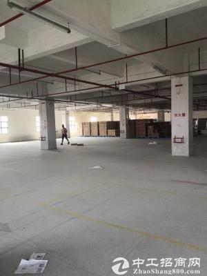 厚街村原房东出租厂房3楼600平,低于厚街价,5000块打包