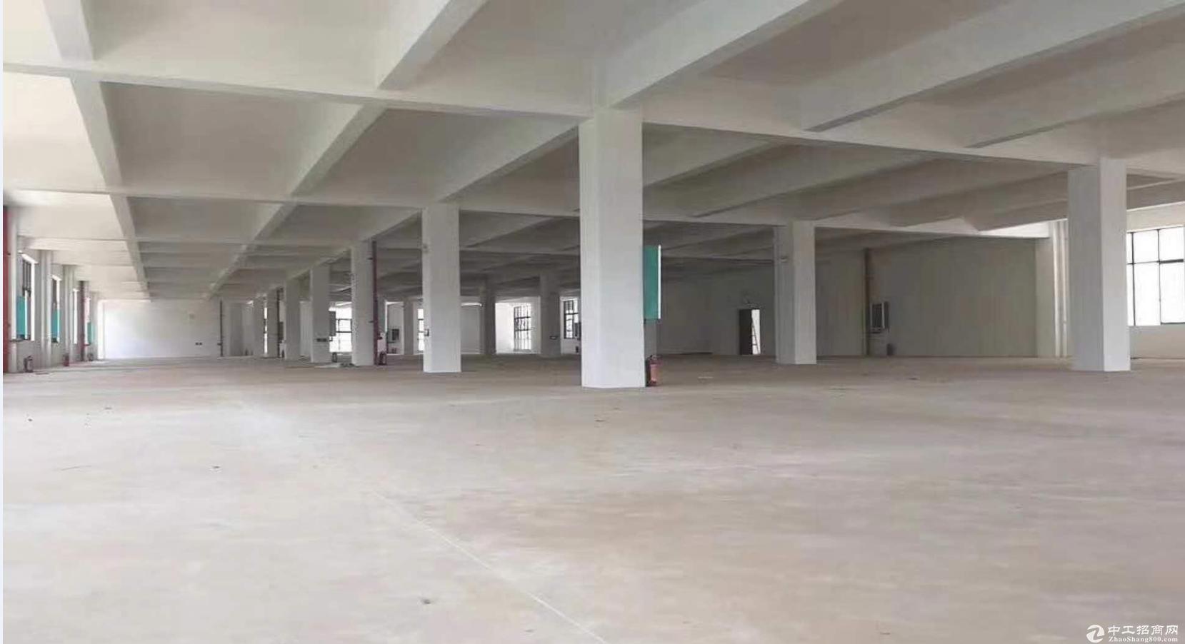 江南 工业园 4字头厂房 50年产权  出售