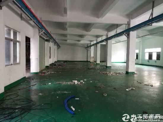 厚街镇河田社区现空出一楼厂房1220平米报价仅16块,公摊极小
