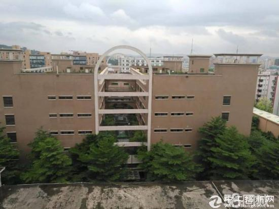 松岗南光高速口带红本厂房5万平米厂房招租-图7